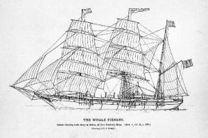 WhalerSteamBark_Mary&Helen_NewBedford_700x446