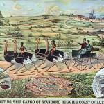 Australia? circa 1880...