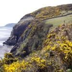 Solway Firth Coastal Walk