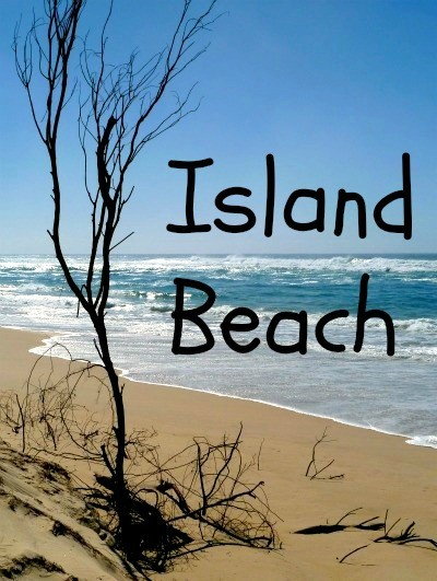 Sandy island beach on Stradbroke Island Australia
