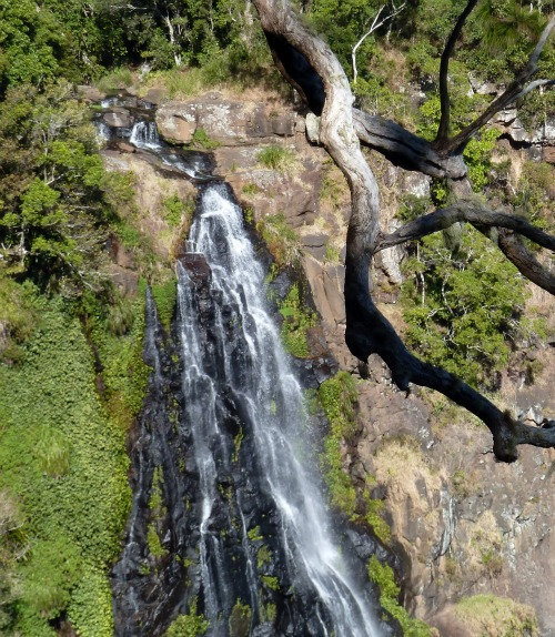 Moran's Falls, Green Mountain, Queensland