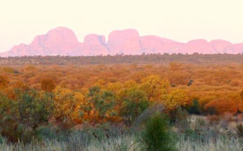 Image Kata Tjuta sunrise