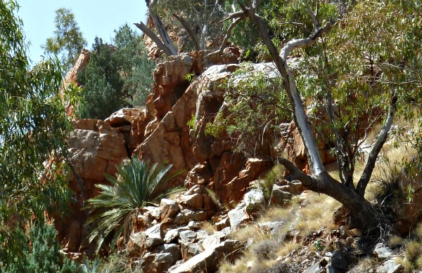 Standley Chasm path