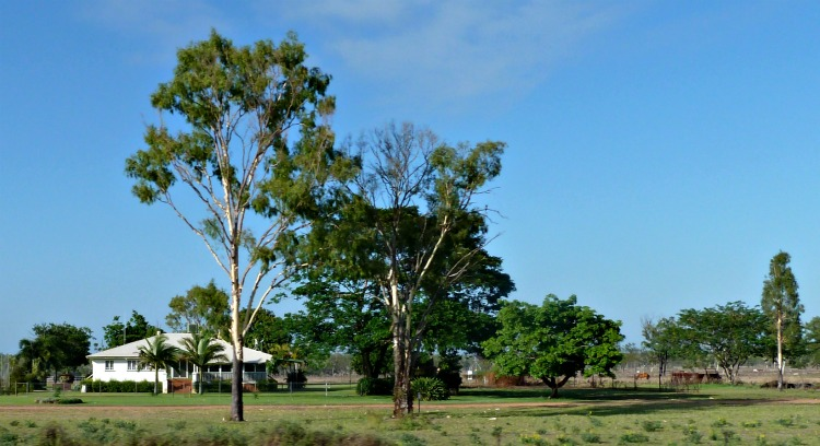 Queensland Homestead