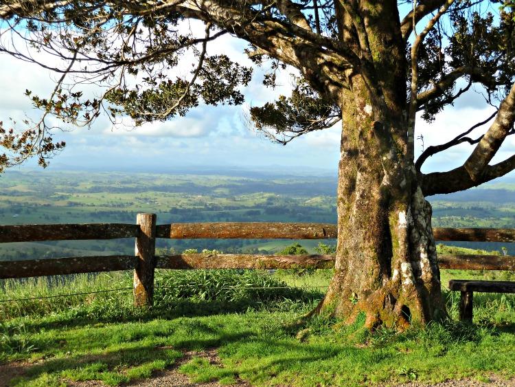 Image: Atherton Tablelands