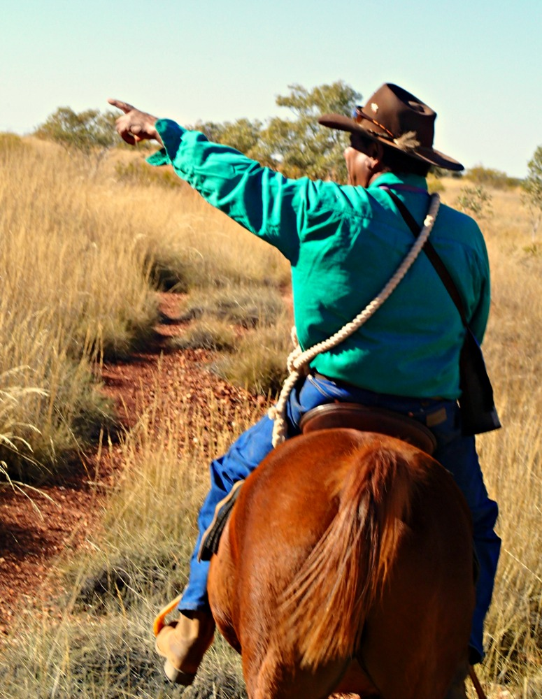 horse riding tennant creek