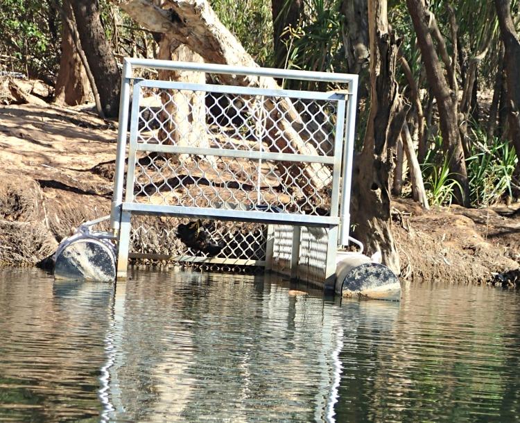 Crocodile trap Katherine river