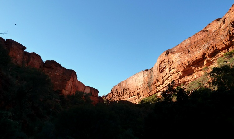 Kings Canyon from Kings Creek