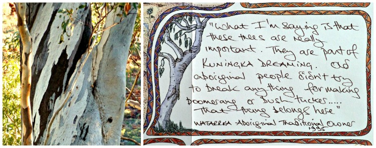Traditional owners of Watarrka ask that you respect their trees