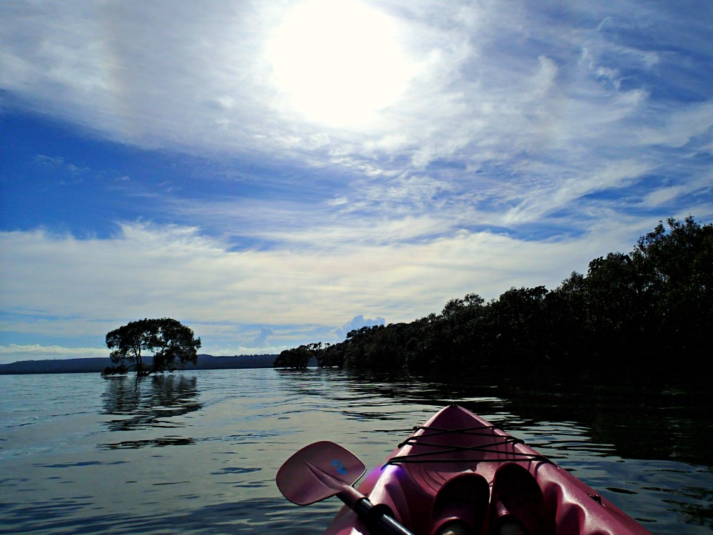 Kayaking Moreton Bay