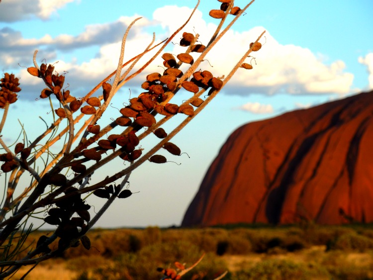 Uluru, heart of the Red Centre