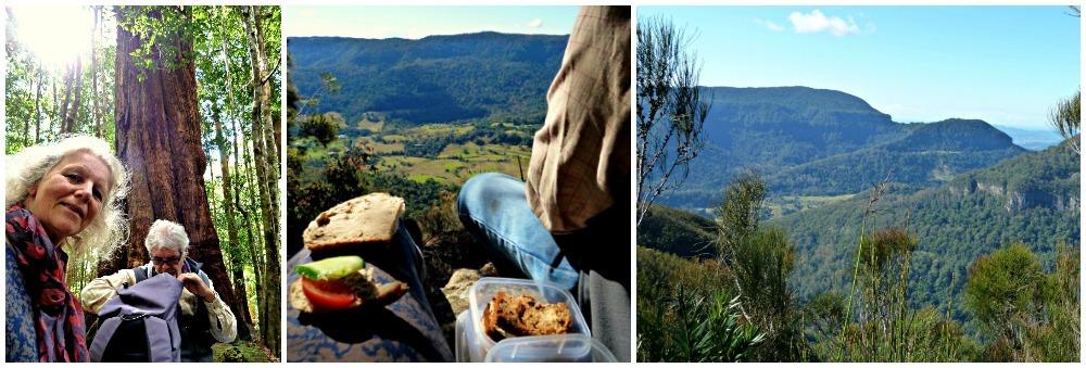 View over Numinbah Valley from Binna Burra