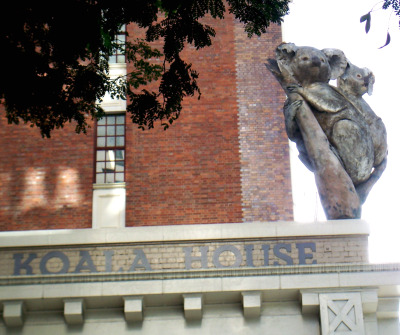 Koala statue on the side of a building in Brisbane