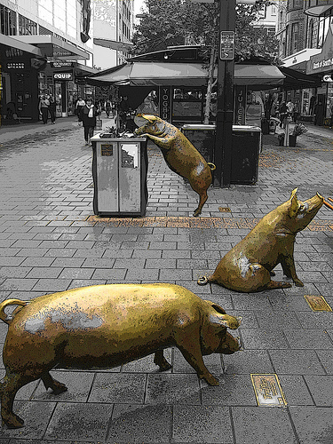 Pigs in Rundle Mall, Adelaide
