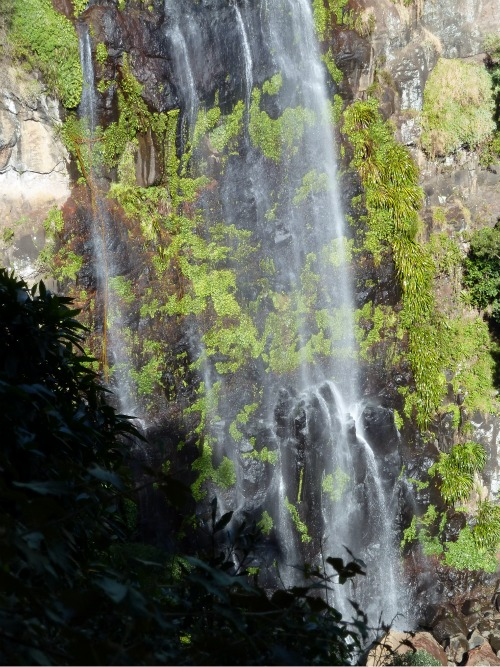 Morans Falls, Green Mountain, Queensland