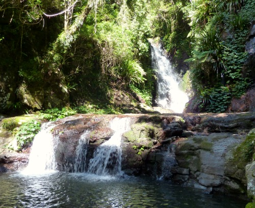 Elabana Falls, Lamington National Park, Australia