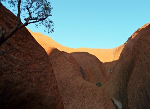 Uluru Australia Ayers Rock