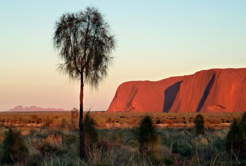 Kata Tjuta at Sunrise