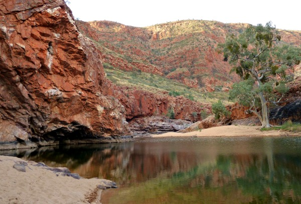 Orminston Gorge Red Centre Australia