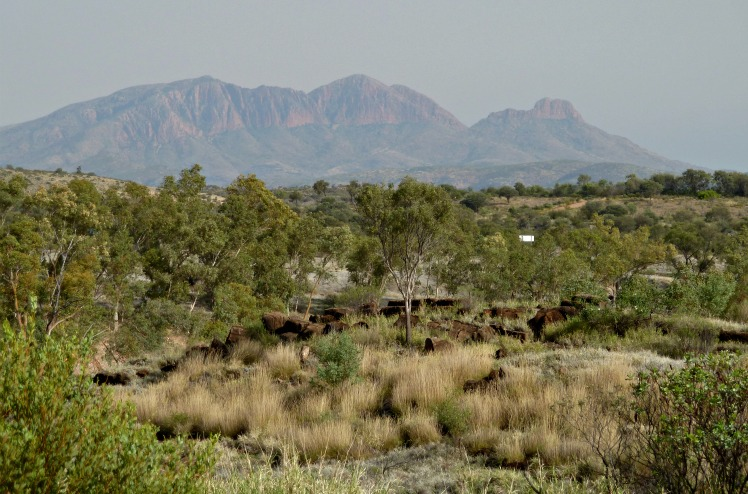 Mt Sonder, West McDonnell Range, central Australia