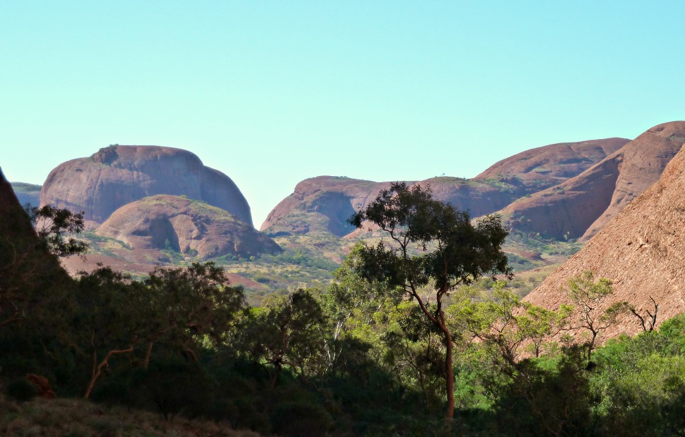 Kata Tjuta Open Plain