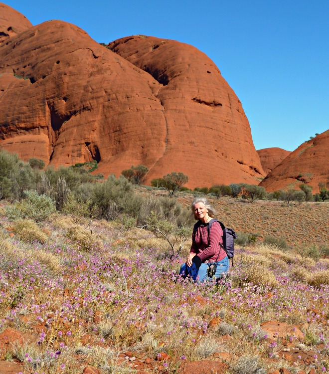 Kata Tjuta Valley of the Winds