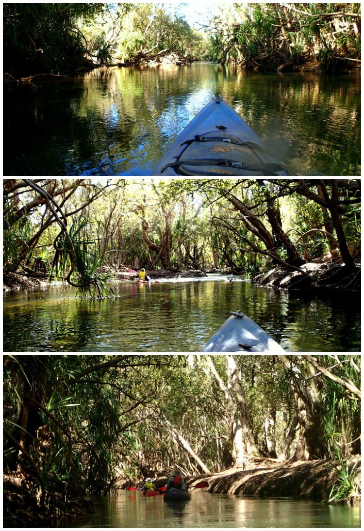 Kayaking Katherine River