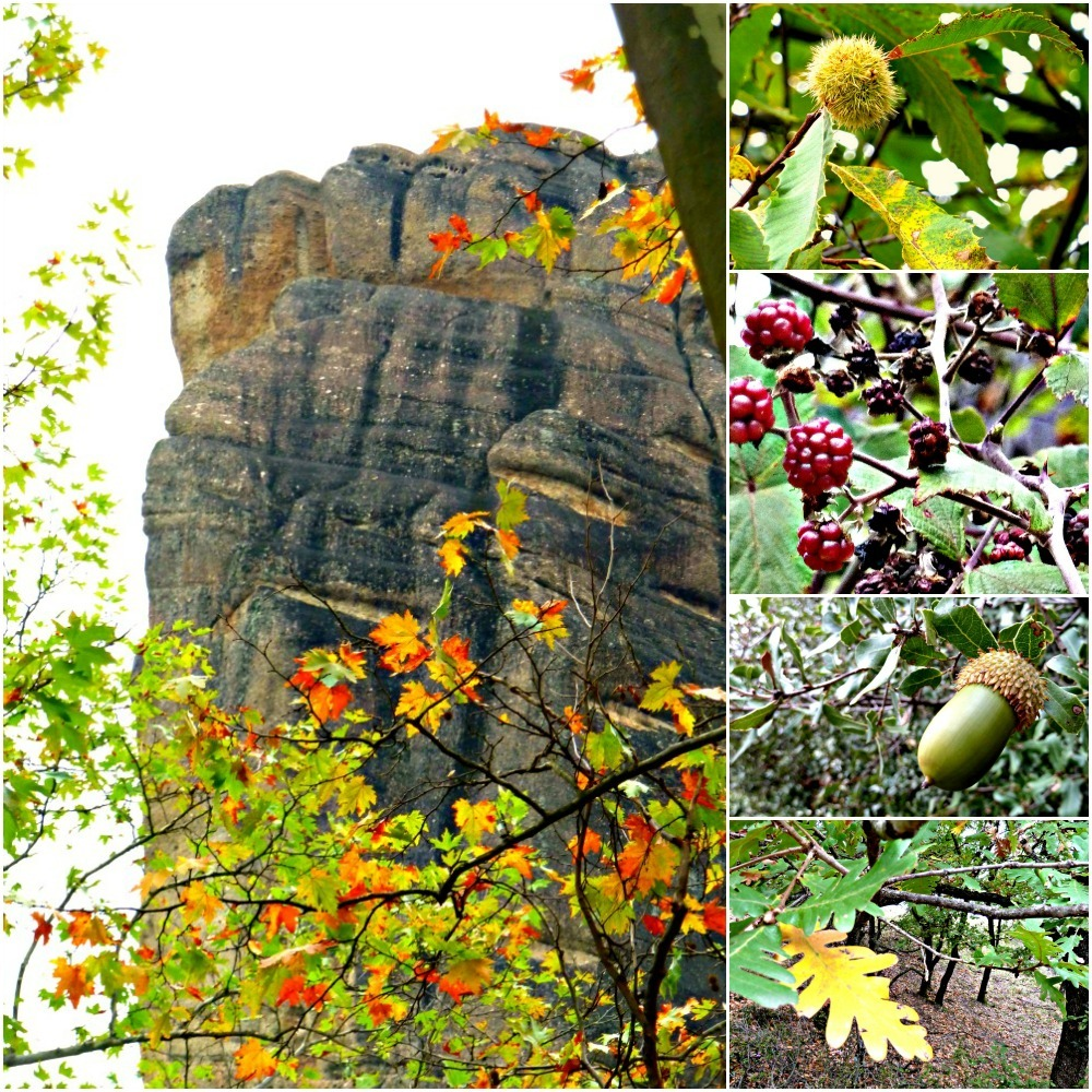 Autumn colours in Meteora