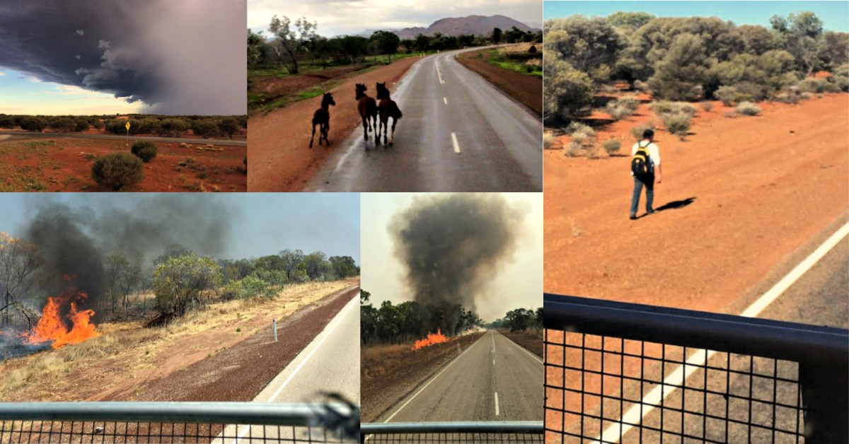 A collage of wild brumbie hoses and a walker in outback Australia