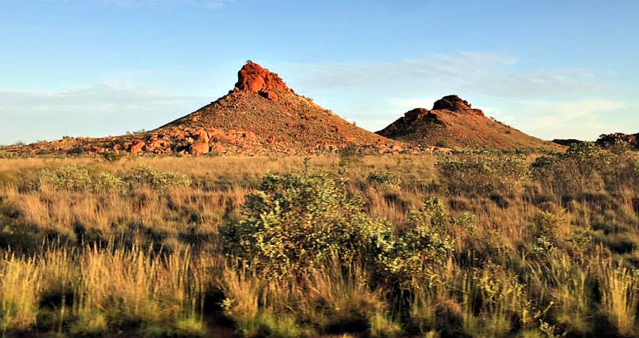 Misas seen near Port Hedland WA